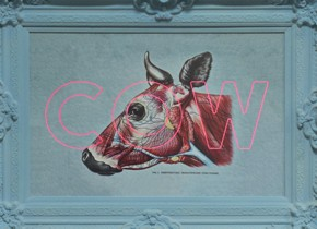 Cow by Dangerous Minds