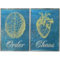 Metebelis Order Chaos
