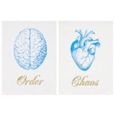 Order Chaos Cyan Blue Small Print